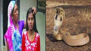 इस लडकी की मांग में भरा सांप ने संदूर   Ichchadhari Naag Impersonator Arrested