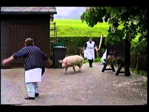 Austrian Woman Chasing A Pig