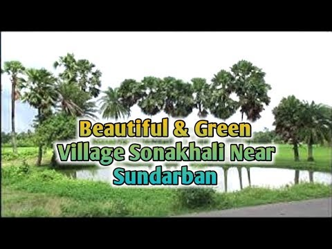 Xxx Mp4 BEAUTIFUL SONAKHALI VILLAGE IN SUNDARBAN SOUTH 24 PARGANAS WEST BENGAL INDIA 3gp Sex
