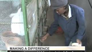 Making a Difference Rabbit Farming