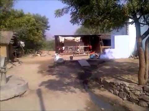 Rajasthani Village Rug Weavers by Oriental Rugs of Bath