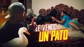 Le vendo un pato -  Agapito Díaz