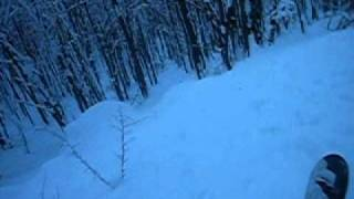The horor forest skiing...