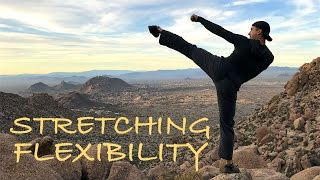 STRETCHING & FLEXIBILITY for KICKS & MARTIAL ARTS everyone should know