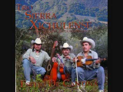 Trio Sierra Xichulense Todabia no me doy por Vencido