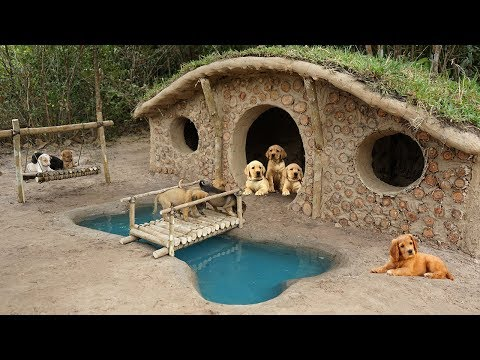 Xxx Mp4 Rescue 7 Newborn Puppies And Start Building Hobbit Dog Home 3gp Sex