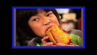[Fashion News] Asia dog at madison square park eats