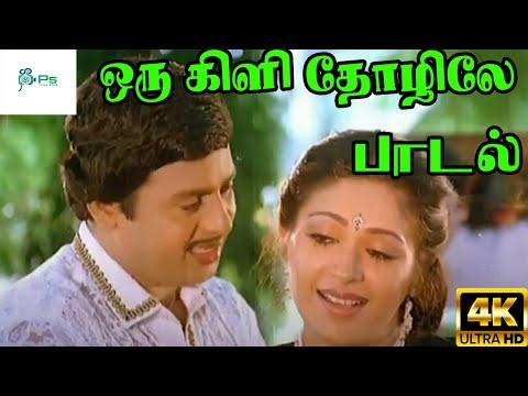 Xxx Mp4 Oru Kizhi Thozhille ஒரு கிளி தோழிலே Ramarajan Roopini Love Duet Melody H D Song 3gp Sex