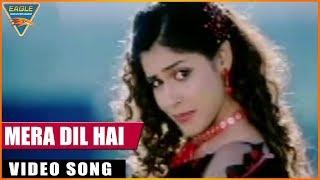 Main Hoon Gambler Hindi Dubbed Movie    Mera Dil Hai Video Song    Eagle Entertainment Official