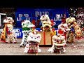 Download Video Download Lunar New Year Houston 2019 #8 春节 Vien Thong Tu Temple Lion Dance - múa lân / 舞狮 3GP MP4 FLV