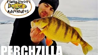 Monster Idaho Jumbo Perch Ice Fishing with Jaw Jacker FishHunter Directional 3D