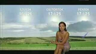 Weathercaster Upskirt - A must see!