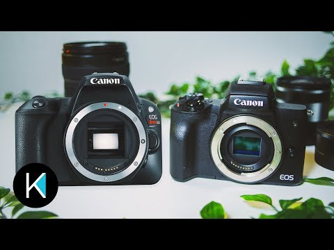 CANON M50 OR SL2200D? WHICH IS BEST FOR YOU?