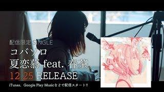 【配信スタート!!】夏恋慕 feat. 春茶 / コバソロ teaser