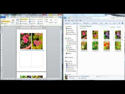 Drag and drop a picture into Word Document Easily WITHOUT picture distortion .