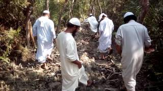 islamic sikha safaf-Fatrarbab. Buy Mahadul Buhosil islamia