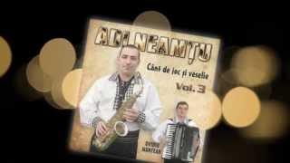 Adi Neamtu- Invartite din Marginimea Sibiului vol 3