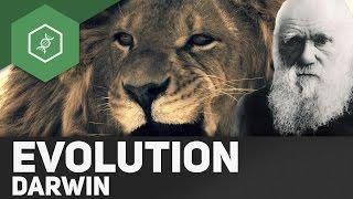 Evolutionstheorie von Charles Darwin ● Gehe auf SIMPLECLUB.DE/GO & werde #EinserSchüler