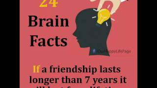 24 Brain Facts...Everyone should know this...!