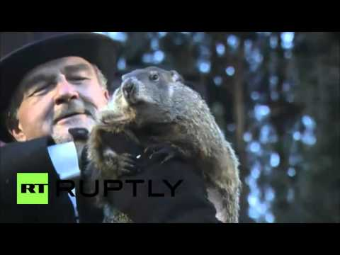 Groundhog Day 2016 Punxsutawney Phil s prediction