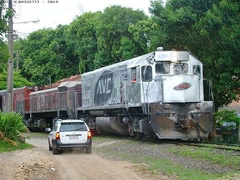 Trem ALL Locomotiva G22U com pintura prateada no Ramal de Rio Branco do Sul