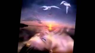 Atrapado en dos amores   -  Salsa Romantica