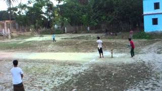 Anik cricket pagol