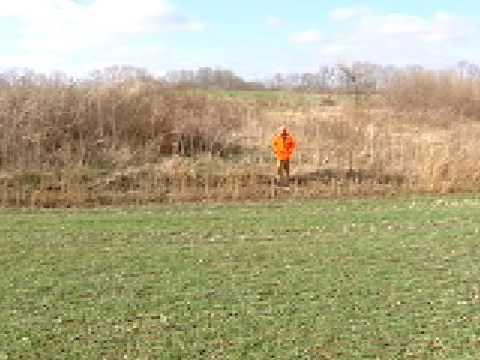 Kentucky Rabbit Hunting