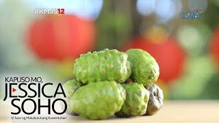 Kapuso Mo, Jessica Soho: Noni Fruit: Gamot o Lason?