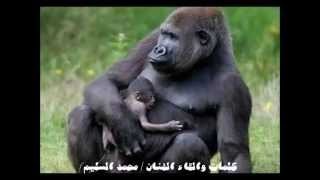 محمد السليم مرحوم ياقرد توفى من شهر