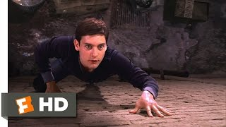 Spider-Man Movie (2002) - Peter