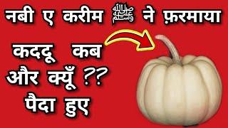 लौकी कब और क्यूँ ? पैदा हुई || Nabi e kareem huzoor ﷺ ne farmaya || gourd || Loki || लौकी || pumpkin