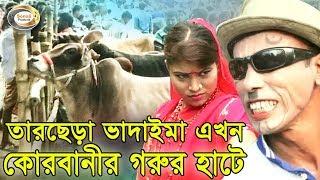 Bangla Comedy - তারছেড়া ভাদাইমা এখন কোরবানীর গরুর হাটে | ভাদাইমার ঈদ আকর্ষণ