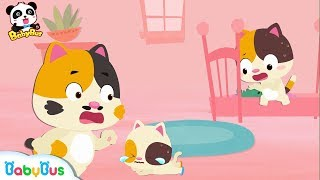 Why Did Baby Kitten Fall down   Big and Small Song   Kids Safety Tips   Number Counting Song BabyBus