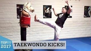 Amazing Taekwondo Kicks Training! | Top 25 of 2017