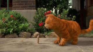 #Mind Warehouse | Why You Shouldn't Kiss your Cat