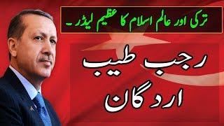Turkey President Recep Tayyip Erdogan Biography| Alif news