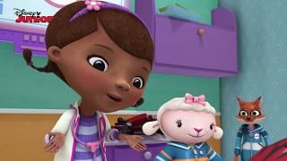 Dottoressa Peluche - Ospedale dei giocattoli - La festa di compleanno - Dall