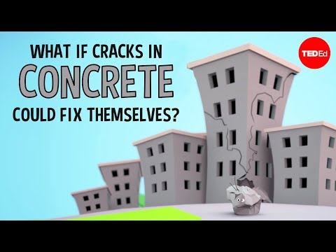 What if cracks in concrete could fix themselves Congrui Jin