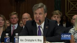 FBI Director Nominee Christopher Wray Opening Statement (C-SPAN)