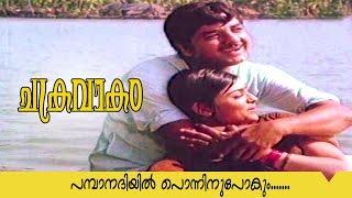 Chakravakam | Malayalam Movie Song | Pamba Nadhiyil Ponninnu Pokum..