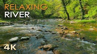 4K Relaxing River - UHD Nature Video -  Water Stream & Birdsong Sounds - Sleep/Study/Meditation