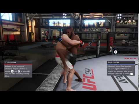 Having Sex in UFC