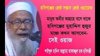 সুরা আছরের তাফসীর | Hafez Maulana Tafazzul Haque Hobigonji | Bangla Waz | ICB|Digital | 2017