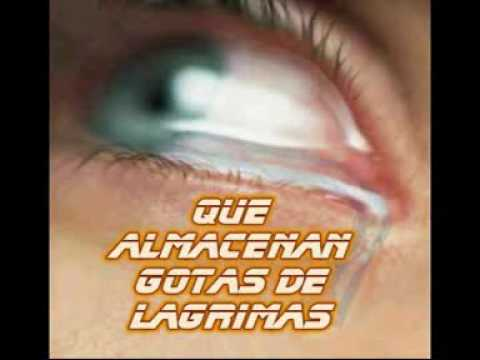 el poema o video mas triste del mundo vuelve te prometo que te hara llorar