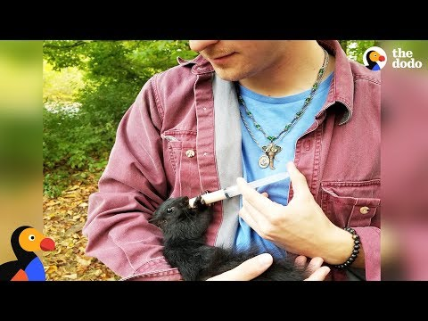 Xxx Mp4 Squirrel Still Visits Man Who Rescued Him As A Lost Baby The Dodo 3gp Sex