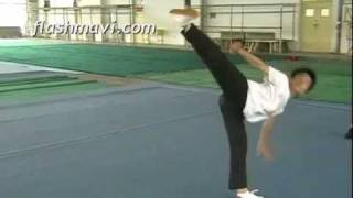 How to do a Side Kick in Wushu Taolu