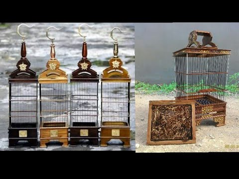 Model Sangkar Burung Pleci Yang Cocok Buat Anda Pecinta Burung