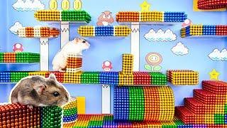 DIY - Build Amazing Super Mario Hamster Maze With Magnetic Balls (Satisfying) - Magnet Balls