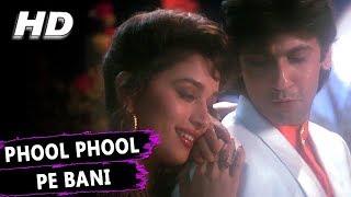 Phool Phool Pe Bani Teri Tasveer | Kavita Krishnamurthy, Udit Narayan | Phool Songs | Madhuri